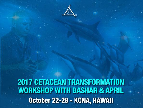 Next Dolphin Workshop